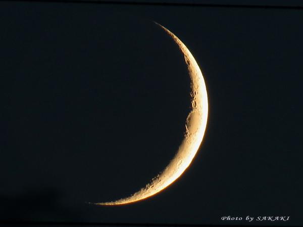 moon0820.jpg