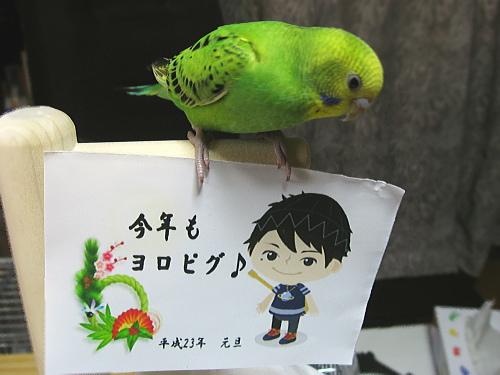 pchan_newyear.jpg
